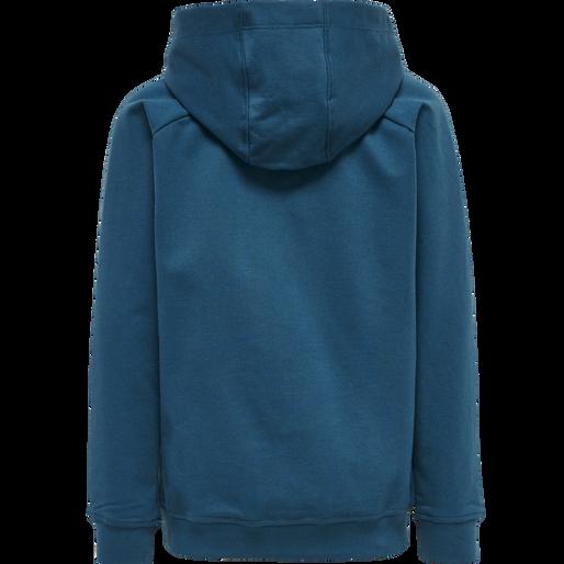 hmlACTION COTTON HOODIE KIDS, BLUE CORAL/GREEN ASH, packshot